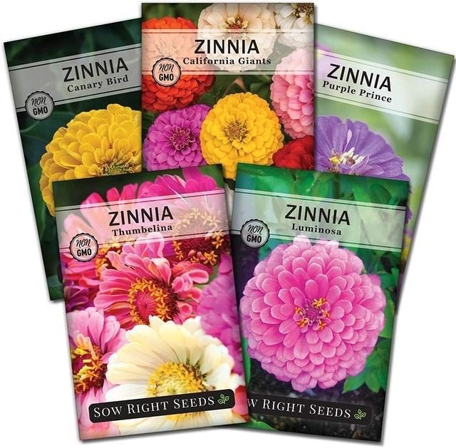 Right Hardware Zinnia Flower Seeds 1
