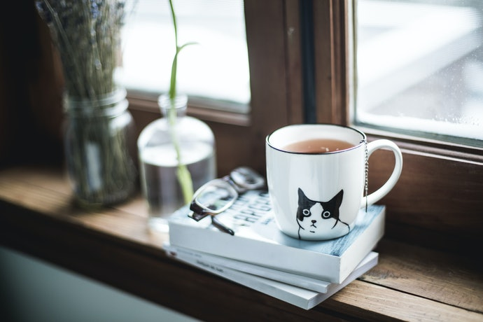 Gifts for Non-Cat Owners Can Just be Cat-Themed