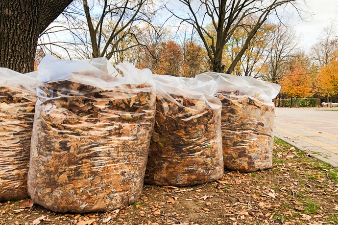 Biodegradable Bags Will Break Down but Won't Disappear