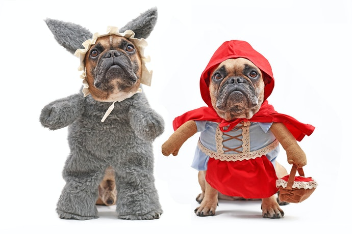 Walking-Dog Costumes are Ideal for Small or Medium Pups