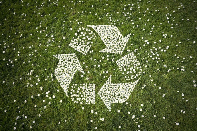 Look for Recyclable or Biodegradable Packaging