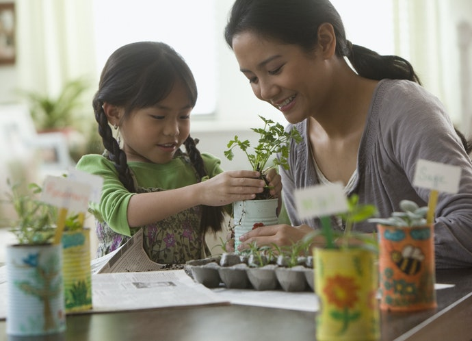 Take a Look at Indoor Gardening if Space is Limited