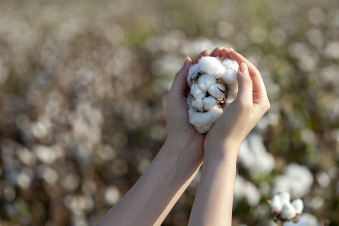 Select Cotton for Comfort