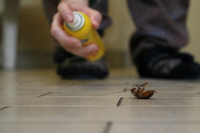 Take Caution When Spraying Indoors
