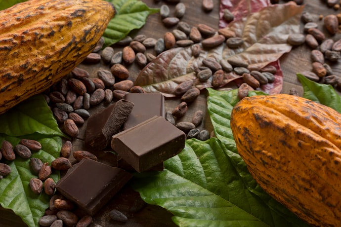 The Higher the Cocoa Content, the Better for Your Health