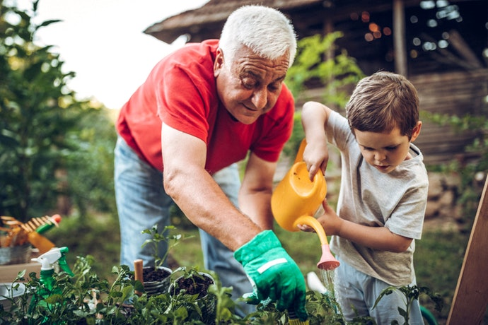 More Tools to Simplify Gardening