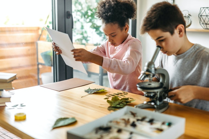 Cultivate a Learning Atmosphere at Home