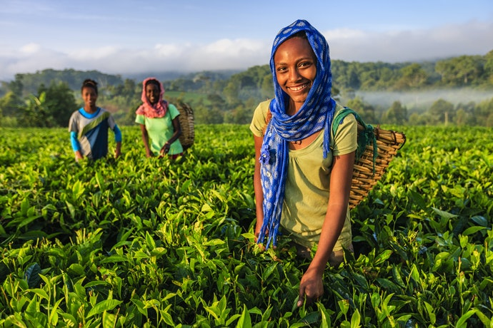 Fair Trade-Certified Products Help Support the Workers