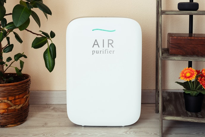 Some Can Also Purify Your Air