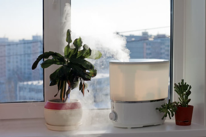 Tips to Keep Your Portable Humidifier Clean