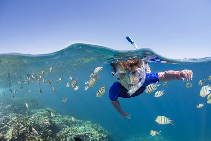 Semi-Dry Snorkeling Tube for Surface Snorkeling