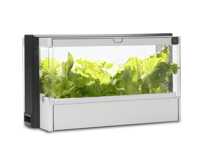 Make Things Simpler With a Smart Garden