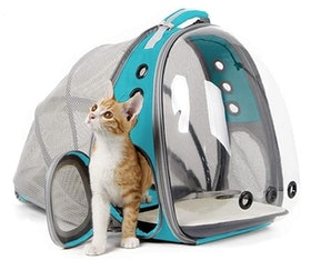 Top 10 Best Cat Backpack Carriers in 2020 (PetAmi, Lollimeow, and More) 5