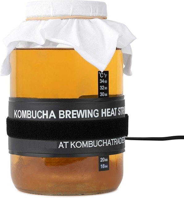 kitchentoolz Kombucha Starter Kit 1