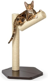 Top 10 Best Sisal Scratching Posts in 2020 (SmartyKat, PetFusion, and More) 1