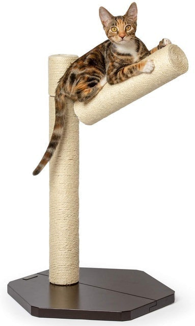 PetFusion Branch-Out Cat Scratching Post 1