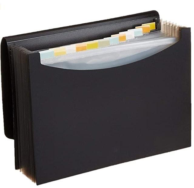 AmazonBasics Expanding Organizer File Folder 1