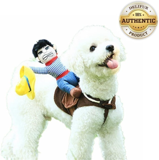 Delifur Cowboy Rider Style Dog Carrying Costume 1