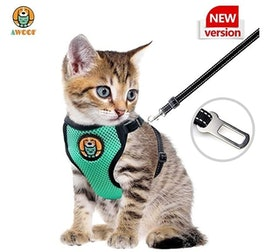 Top 10 Best Cat Harnesses in 2020 (Kitty Holster, rabbitgoo, and More) 2