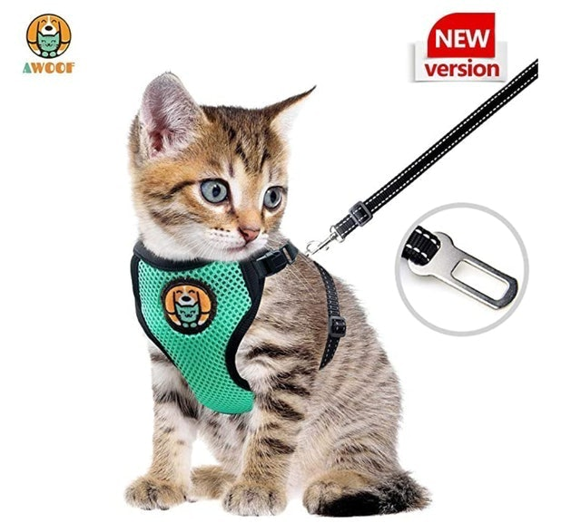 Awoof Adjustable Kitten and Cat Harness With Leash 1