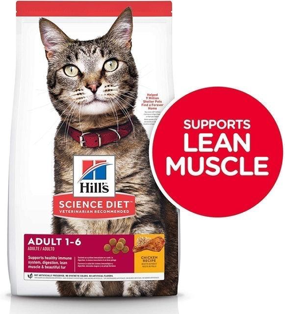 Top 10 Best Dry Cat Foods To Buy Online 2020 Mybest