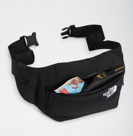 Top 10 Best Fanny Packs for Men in 2021 (Patagonia, Carhartt, and More) 1