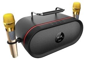 Top 10 Portable Karaoke Machines in 2021 (KaraoKing, Singsation, and More) 2
