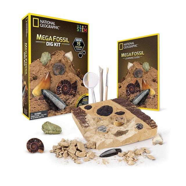 National Geographic Mega Fossil Dig Kit  1