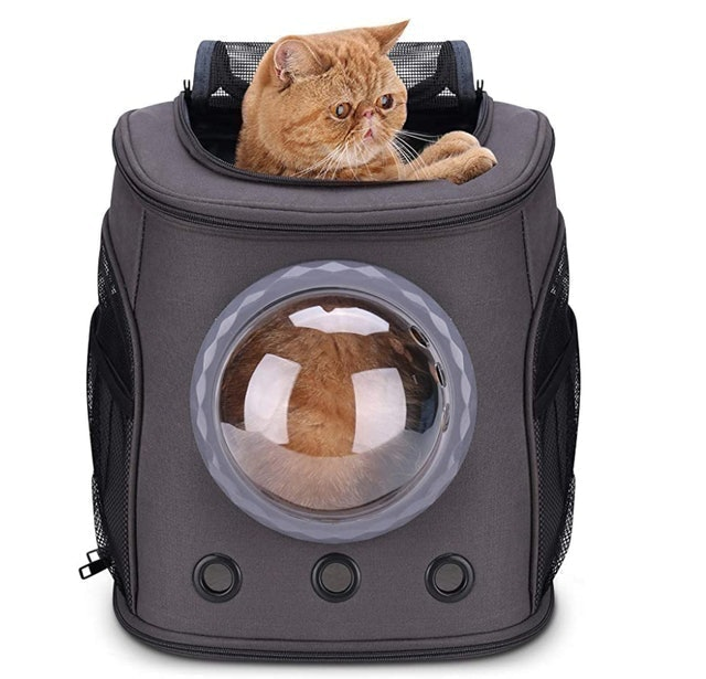 Lollimeow Large Cat Backpack Carrier 1