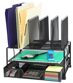 Top 10 Best File Organizers in 2021 (AmazonBasics, Officemate, and More) 2