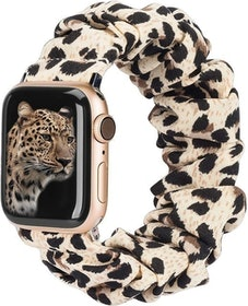 Top 10 Best Apple Watch Bands in 2021 (Apple, Supcase, and More) 3