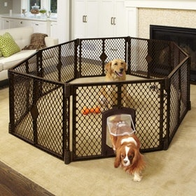 Top 10 Best Dog Playpens in 2021 (Mypet, Iris USA, and More) 5