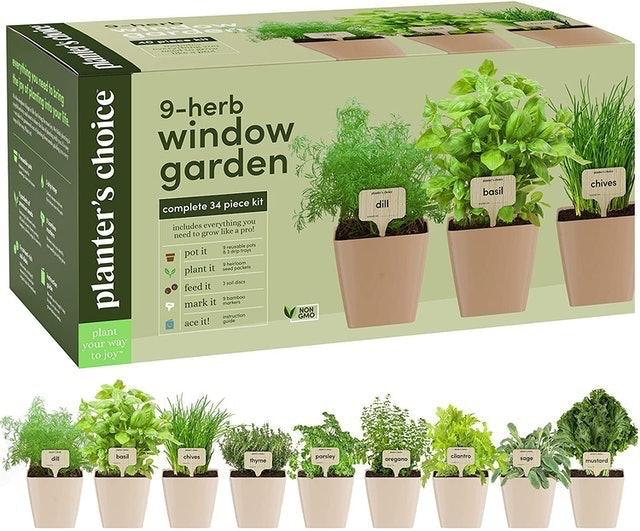 Planters' Choice 9-Herb Window Garden 1