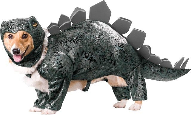 Animal Planet Stegosaurus Dog Costume 1