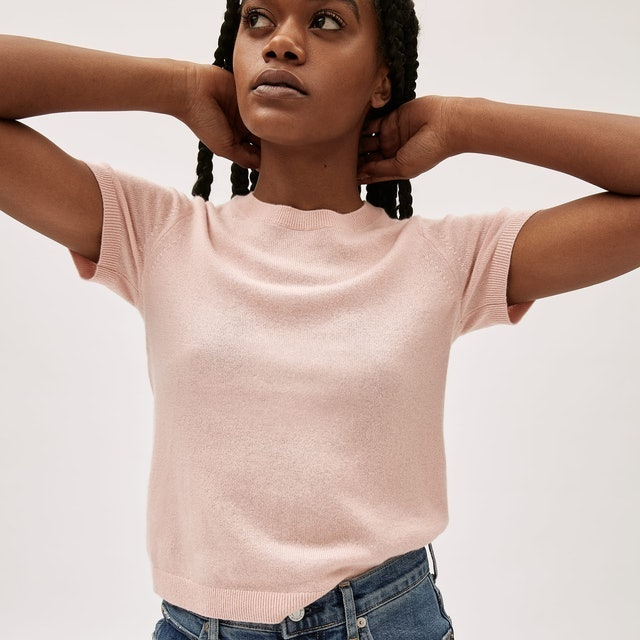 Everlane The Cashmere Sweater Tee 1