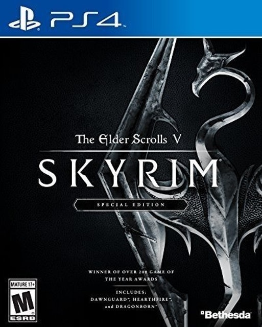 Bethesda Game Studios Elder Scrolls V: Skyrim 1