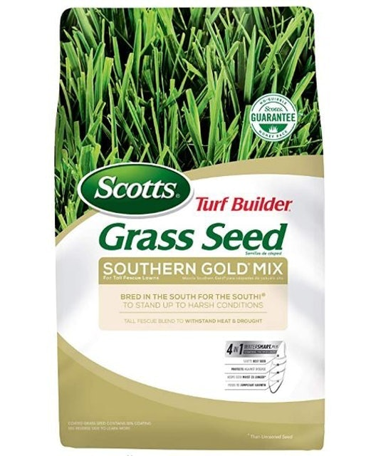 Scotts  Turf Builder Grass Seed Southern Gold Mix for Tall Fescue Lawns 1