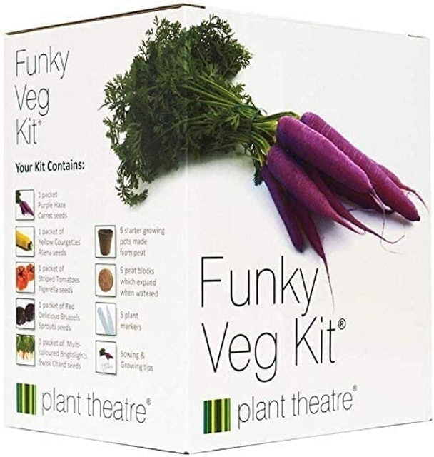 Plant Theater Funky Veg Kit 1