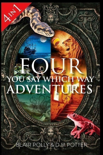 DM Potter and Blair Polly Four You Say Which Way Adventures 1