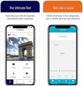 Top 10 Best Language Apps for Travel in 2020 (HelloTalk, Google Translation, and More) 3