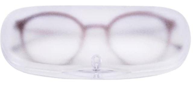 Ezeso Essential Skincare Plastic Translucent Eyeglass Case 1