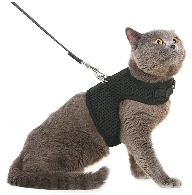 Pupteck Mesh Cat Harness With Leash 1