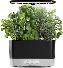 Top 10 Best Indoor Garden Kits in 2020 (AeroGarden, Back to the Roots, and More) 4