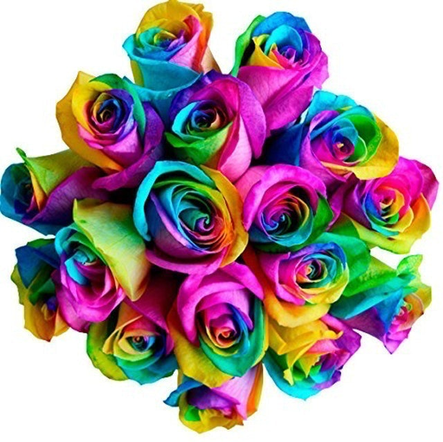 Flower Explosion Fresh Rainbow Roses Bouquet 1