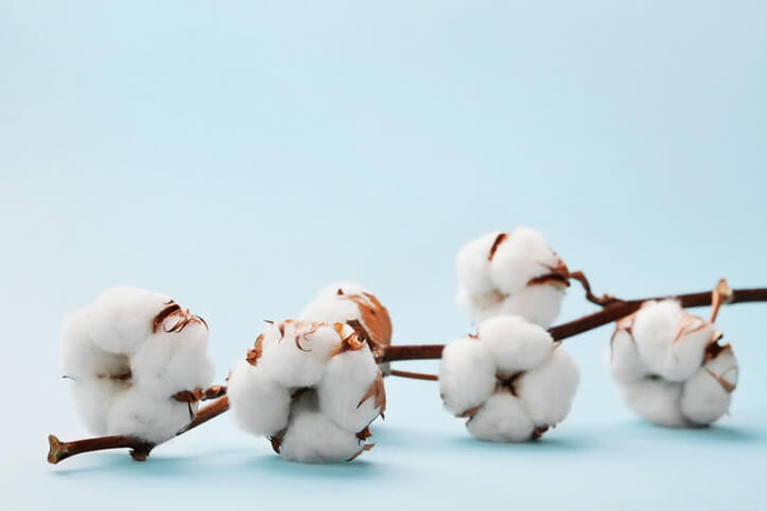 Egyptian Cotton: Soft and Durable If It's Real