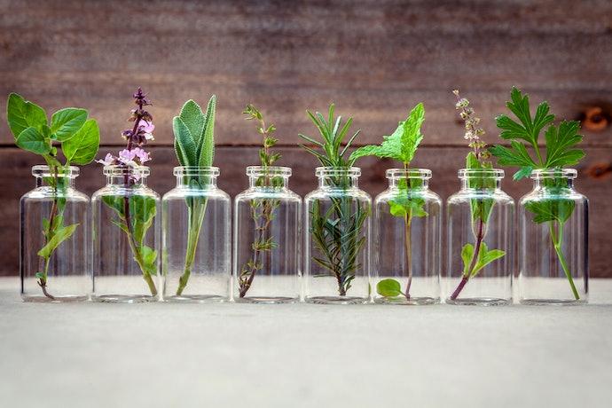 Look Towards Essential Oils for Disinfectant Properties