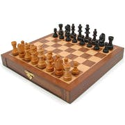 Top 10 Best Chess Sets in 2021 (WE Games, The Noble Collection, and More)