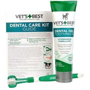 Top 10 Best Dog Dental Care Products to Buy Online 2020