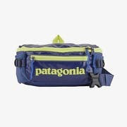 Top 10 Best Fanny Packs for Travel in 2021 (Patagonia, Herschel, and More)