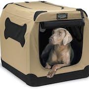 Top 10 Best Dog Crates to Buy Online 2020